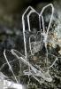 Mineralen_6